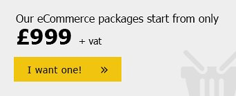 Our eCommerce packages start from only £999 +vat